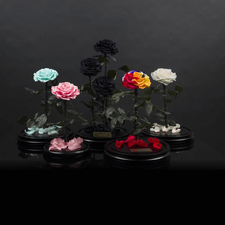 Вечни рози под стъклен купол